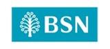 BSN logo iTrainingExpert training provider client