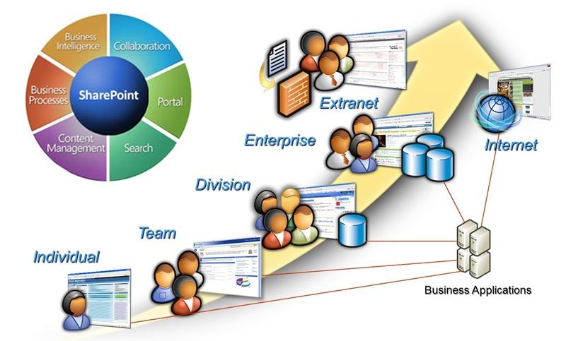 Sharepoint usage