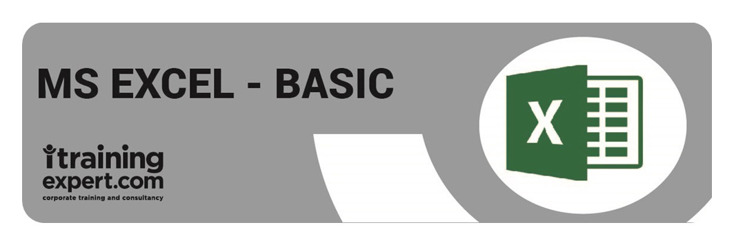 Microsoft Excel - Basic
